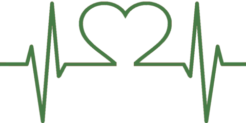 arterial health olive leaf