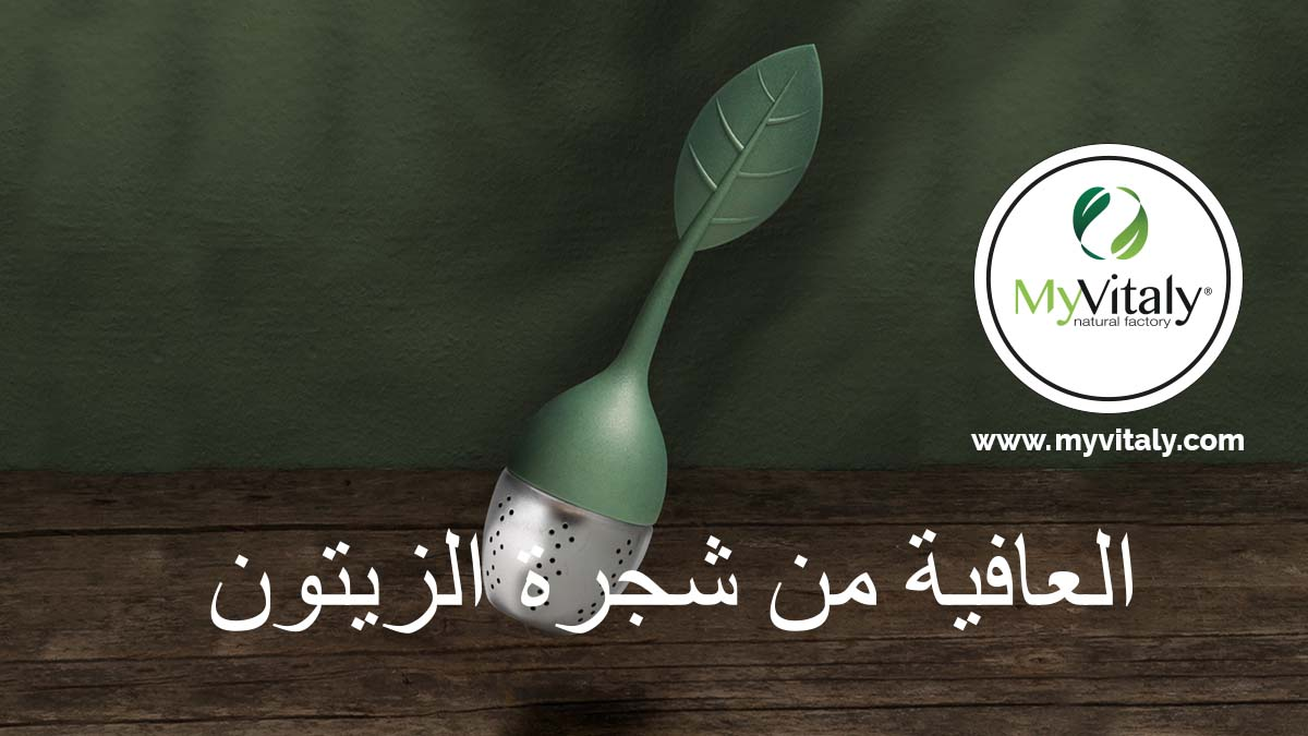 Creative__Tea_Infuser_Design_Tea_Lover_Facebook_AR