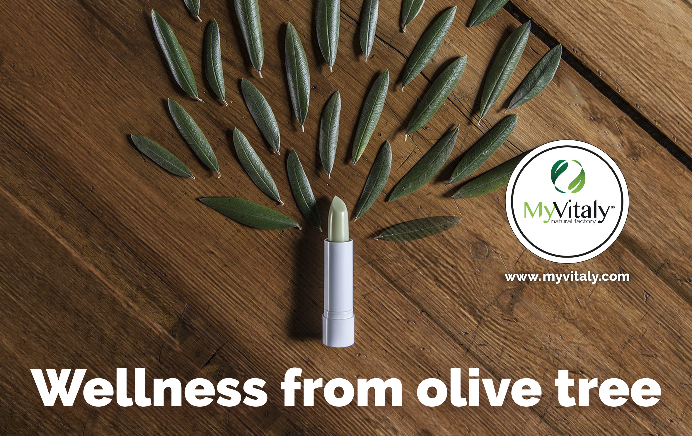 Olive_leaf_extract_benefits_image_EN