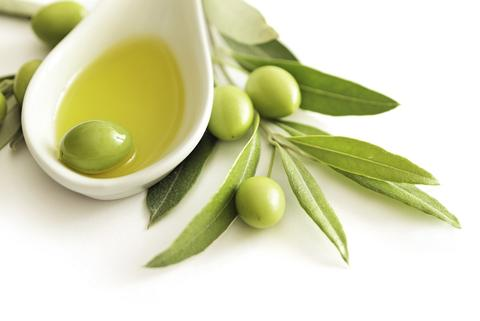 oleuropein olive tree olive leaf benefits