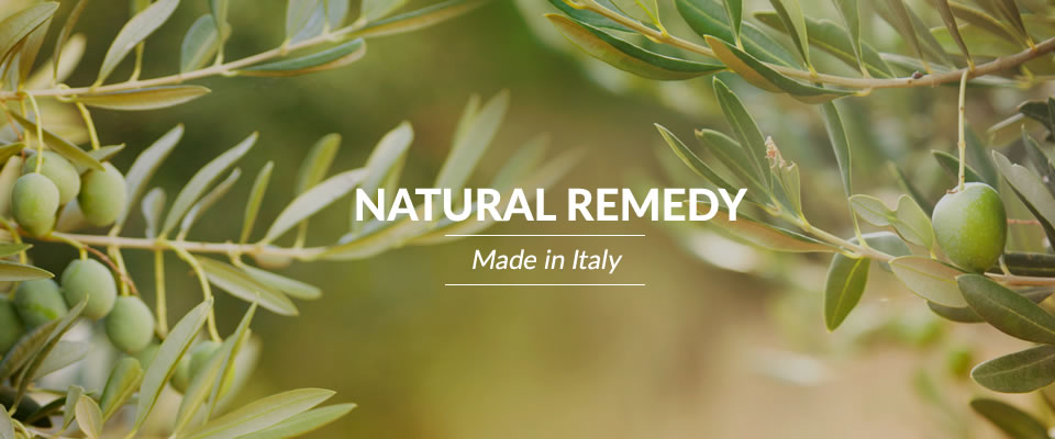 Olive Tree Natural Remedy